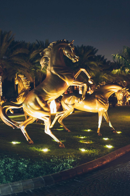 Dubai_Al_Qasr_Andrea_Berlin-4908.jpg